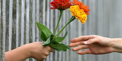 child handing woman three flowers through a fence