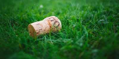 cork in grass