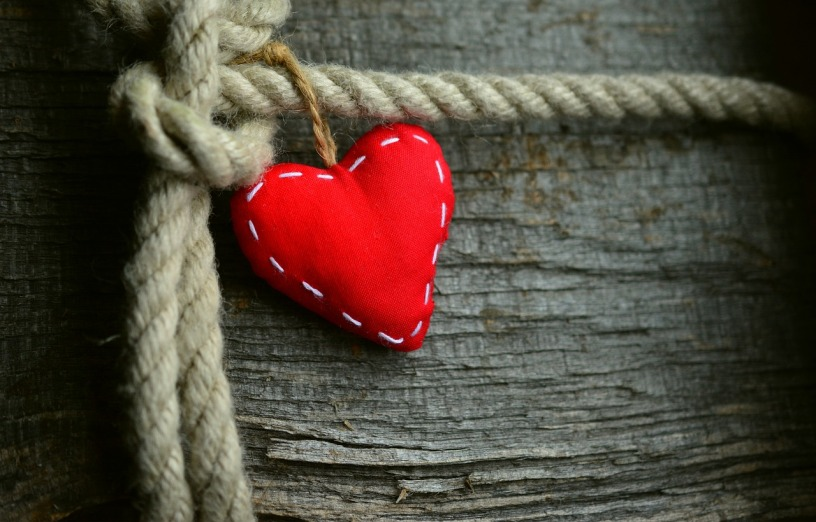 red heart on a rope wrapped around a tree