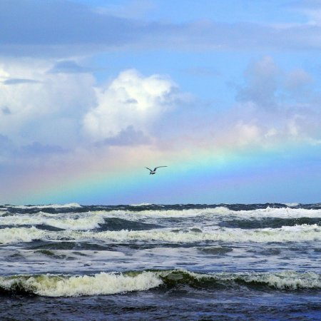 Arched rainbow over rough ocean waves. One seagull flying over the waves.